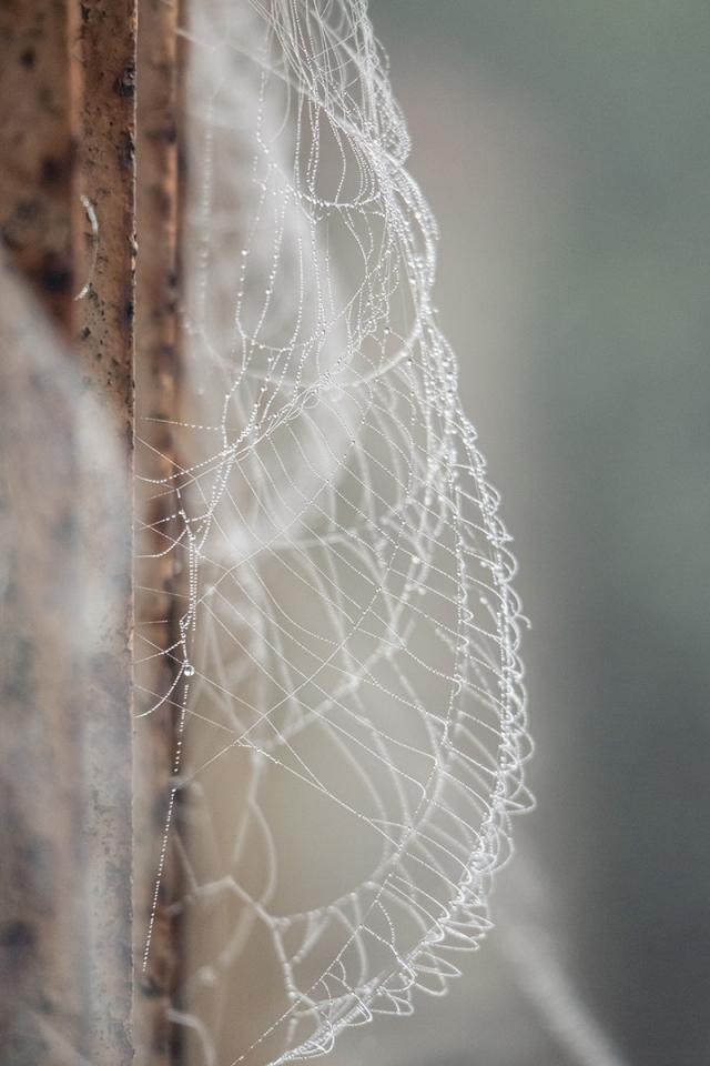 Pókháló-felfújt