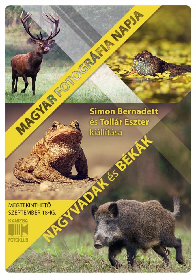 Magyar Fotográfia Napja • kiállítás meghívó