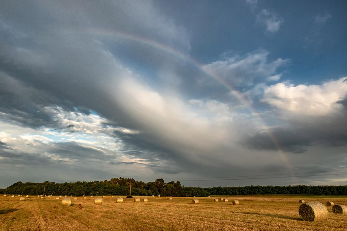 Kutyaszellőztetés fotóbarát időjárással
